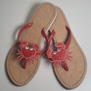 Coach Crab Sandals size 6